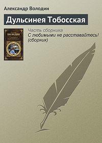 Александр Володин -Дульсинея Тобосская