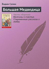 Вадим Селин - Большая Медведица