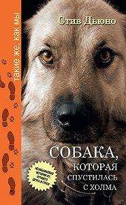 Стив Дьюно - Собака, которая спустилась с холма. Незабываемая история Лу, лучшего друга и героя