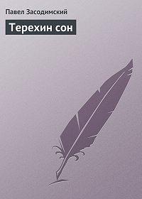 Павел Засодимский - Терехин сон