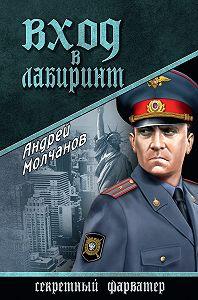Андрей  Молчанов -Вход в лабиринт
