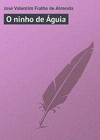 José Almeida -O ninho de Águia
