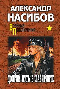 Александр Насибов -Долгий путь в лабиринте