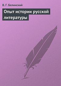 В. Г. Белинский -Опыт истории русской литературы