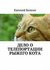 Евгений Белкин -Дело о телепортации рыжего кота