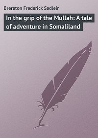 Frederick Brereton -In the grip of the Mullah: A tale of adventure in Somaliland