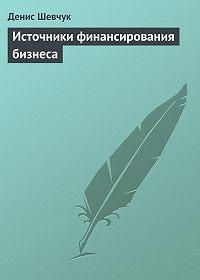 Денис Шевчук - Источники финансирования бизнеса