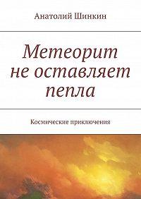 Анатолий Шинкин -Метеорит неоставляет пепла