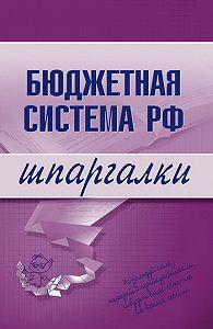 - Бюджетная система РФ
