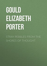 Elizabeth Gould -Stray Pebbles from the Shores of Thought