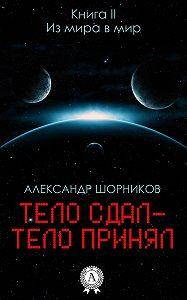 Александр Шорников -Из мира в мир