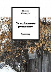 Максим Шинкарёв -Устойчивое решение