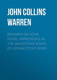 John Collins Warren -Remarks on some fossil impressions in the sandstone rocks of Connecticut River