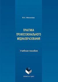 Марина Мясникова -Практика профессионального медиаобразования