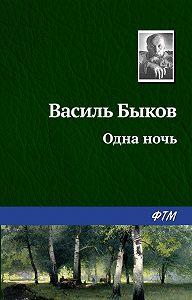 Василь Быков -Одна ночь