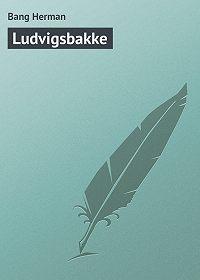 Bang Herman -Ludvigsbakke