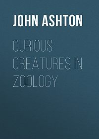John Ashton -Curious Creatures in Zoology