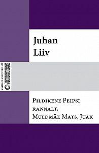 Juhan Liiv -Pildikene Peipsi rannalt. Muldmäe Mats. Juak