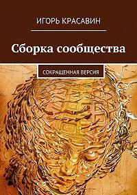 Игорь Красавин - Сборка сообщества