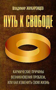 Владимир Жикаренцев -Путь к свободе. Кармические причины возникновения проблем, или Как изменить свою жизнь