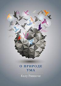 Калу Ринпоче -О природе ума
