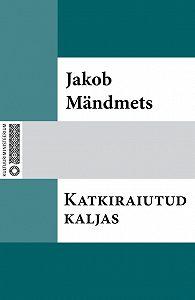Jakob Mändmets - Katkiraiutud kaljas