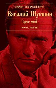 Василий Шукшин -Далекие зимние вечера