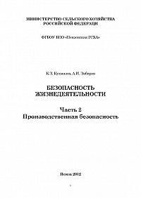 Али Зябиров -Безопасность жизнедеятельности. Часть 2. Производственная безопасность