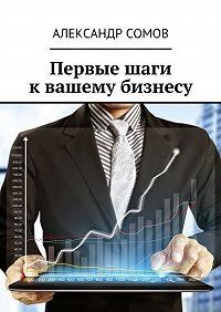 Александр Сомов -Первые шаги квашему бизнесу