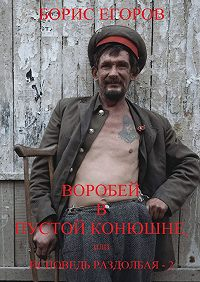 Борис Егоров -Воробей впустой конюшне, или Исповедь раздолбая–2