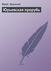 Юрий Вронский -Юрьевская прорубь