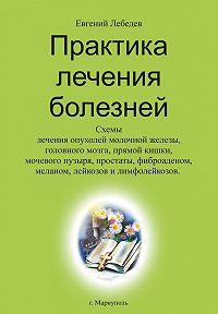 Евгений Лебедев - Практика лечения болезней