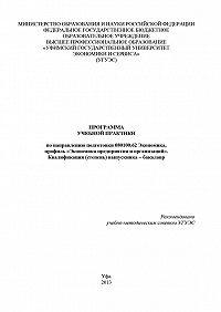 Гульнара Шайхутдинова -Программа учебной практики по направлению подготовки 080100.62 Экономика, профиль «Экономика предприятия и организаций». Квалификация (степень) выпускника – бакалавр