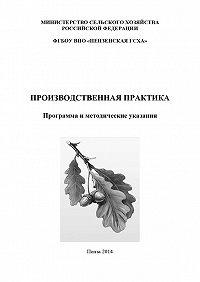 Коллектив авторов -Производственная практика. Программа и методические указания