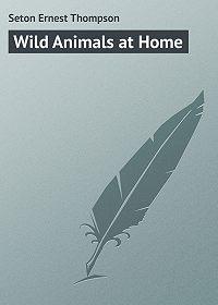Ernest Seton -Wild Animals at Home