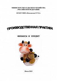 Наталья Зарук -Производственная практика. Финансы и кредит