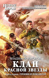 Владимир Воронов - Героями не рождаются