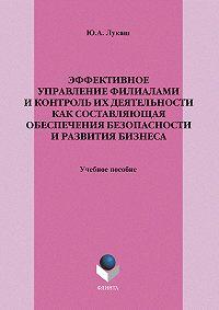 Юрий Александрович Лукаш -Эффективное управление филиалами и контроль их деятельности как составляющая обеспечения безопасности и развития бизнеса