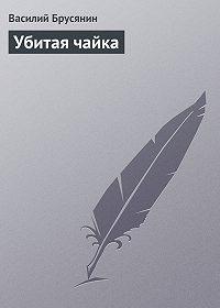Василий Брусянин -Убитая чайка