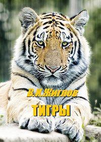 В. Жиглов -Тигры
