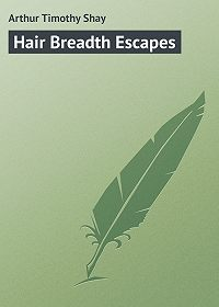 Timothy Arthur -Hair Breadth Escapes