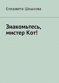 Елизавета Шишкова - Знакомьтесь, мистерКот!