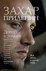 Захар Прилепин -Дорога в декабре (сборник)