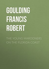 Francis Goulding -The Young Marooners on the Florida Coast