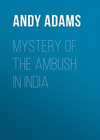 Andy Adams -Mystery of the Ambush in India