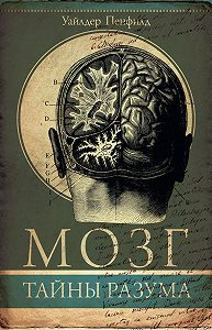Уайлдер Пенфилд -Мозг. Тайны разума