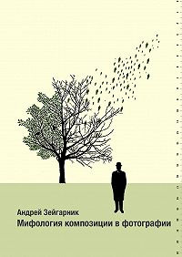 Андрей Зейгарник -Мифология композиции вфотографии