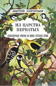 Дмитрий Кайгородов -Из царства пернатых. Популярные очерки из мира русских птиц