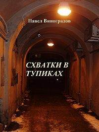 Дмитрий Виноградов -Схватки в тупиках (сборник)