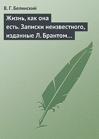 В. Г. Белинский -Жизнь, как она есть. Записки неизвестного, изданные Л. Брантом…
